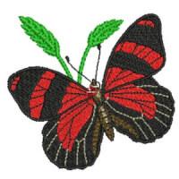 Matriz de bordado borboleta 36