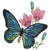 Matriz de bordado borboleta 08