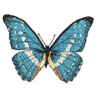 Matriz de bordado borboleta 15