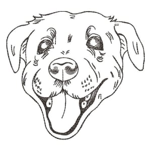 Mutt Embroidery Design